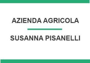 susanna-pisanelli